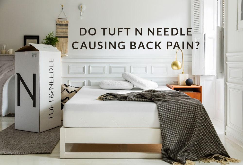 Do Tuft And Needle Causing Back Pain?